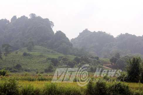 Hổ xám thường trèo qua dãy núi này về xã Thái Bình