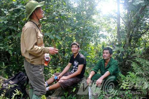 Anh Huy (phải), tác giả và ông Trần Ngọc Lâm đã đi bộ cả tuần trong rừng Lâm Bình để tìm dấu vết hổ