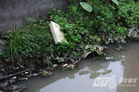 Hệ thống thoát nước nằm sau trường mầm non Tứ Liên