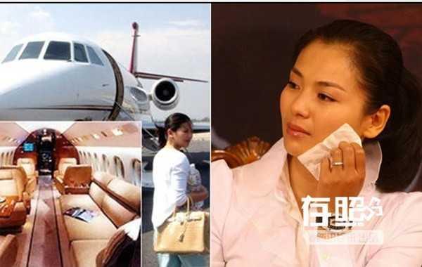 Lưu Đào khi kết hôn với đại gia Vương Khải              đã khiến nhiều người ghen tị. Cô sử dụng máy bay riêng, hàng dài siêu xe              hạng sang. Nhưng hạnh phúc không kéo dài lâu, năm 2008 kết hôn, năm              2010, Lưu Đào đã phải quay lại làng giải trí đóng phim để kiếm tiền.              Chồng cô bị tố nợ nần thẻ tín dụng, kinh doanh thua lỗ và lừa tiền. Mọi              gánh nặng kinh tế trong gia đình giờ do Lưu Đào cáng đáng.