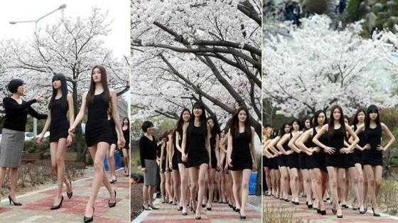 Rất đông cư dân mạng tỏ ra ngưỡng mộ đôi chân dài miên man, thẳng tắp của những nữ sinh này đồng thời ao ước thân hình cao ráo, thanh mảnh của những cô nàng.