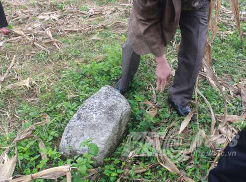 Dấu tích ngôi đình ở cánh đồng làng Kim Tiến