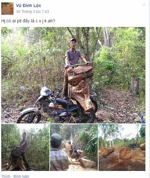 Đối tượng Lộc khoe ảnh khai thác gỗ trên facebook