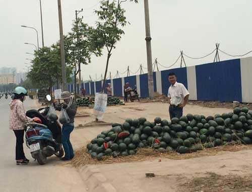Trên đường Nguyễn Xiển, dưa hấu được bày bán la liệt với giá 8.000 đồng/kg