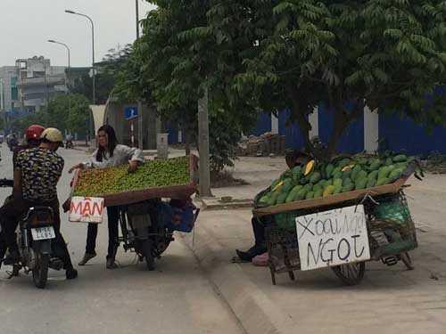 Hầu hết các loại hoa quả bán trên vỉa hè thời gian này đều có giá rất rẻ