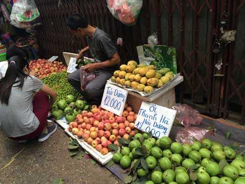 Sinh viên cũng được dịp mua hoa quả ăn thỏa thích