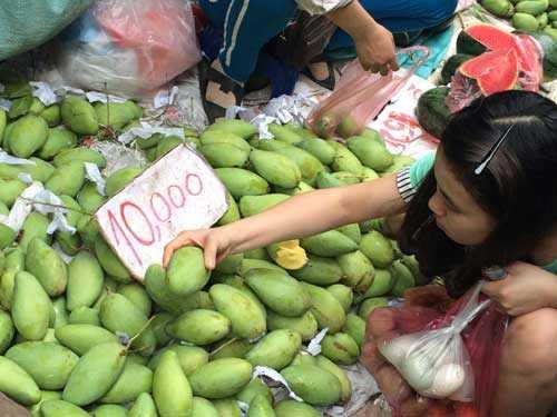 Theo tiểu thương các chợ, nhờ giá rẻ mà hoa quả cũng nhiều người mua hơn, lượng hàng bán ra tăng gấp 4-5 lần so với trước