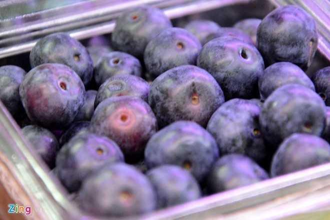 Biết không dễ trồng việt quất thành công              tại Việt Nam, nhưng nhiều người vẫn hy vọng có thể sản xuất loại trái              cây này trong nước. Ảnh: Minh Thanh.