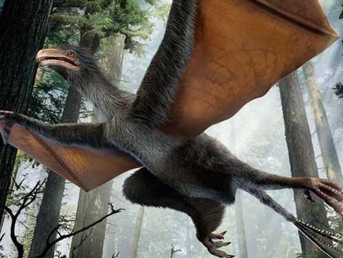 Loài khủng long có cánh mới được phát hiện - Ảnh: Reuters