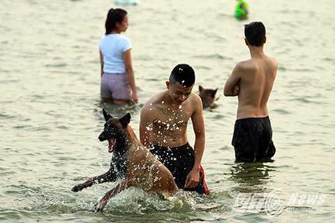 Nhiều chú chó tỏ ra thích thú khi được tắm mát giải nhiệt sau một ngày dài nắng nóng, oi bức.