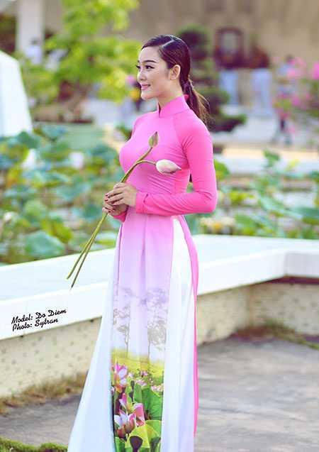 Bộ ảnh của Đỗ Thúy Diễm do chàng trai trẻ Sỹ Trần thực hiện. Bộ ảnh nhằm tôn vinh vẻ đẹp của người phụ nữ Việt Nam trong tà áo dài truyền thống