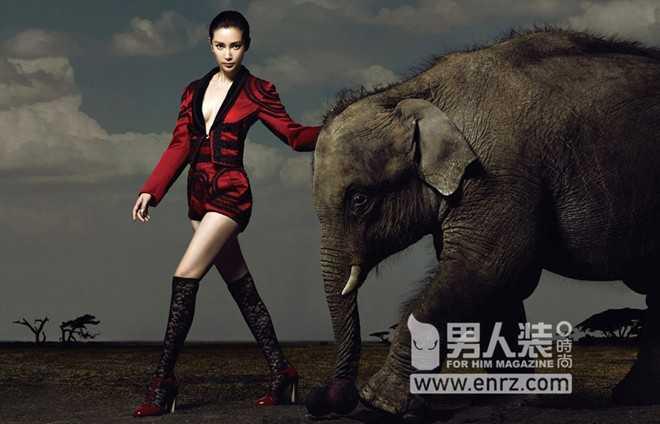 Để chụp được bộ ảnh này, Lý Băng Băng phải làm việc rất vất vả bởi bạn diễn của cô là những chú voi khó bảo.