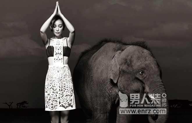 Từ hơn 2 năm nay, Lý Băng Băng tham gia chiến dịch Nói không với buôn bán ngà voi.