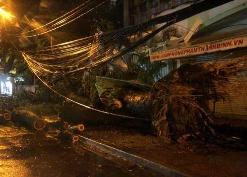Bão Pakhar khiến gần 500 căn nhà đổ sập và tốc mái, hơn 400 cây xanh bị đổ vào đêm 1/4/2012.