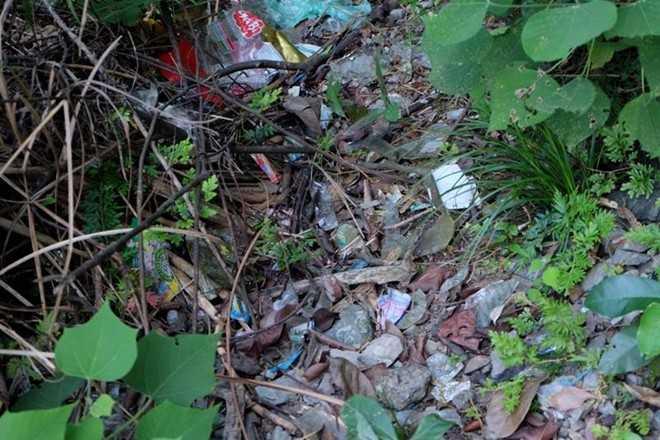 Những chiếc vỏ kẹo còn sót trên núi. Ảnh: VietNamNet.