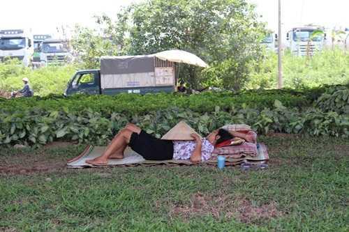 Người dân mang chiếu ra gầm cầu cạn ngủ trưa, tránh nắng nóng