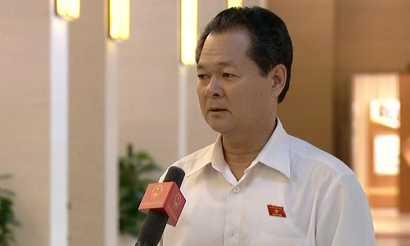 Đại biểu Trương Minh Hoàng