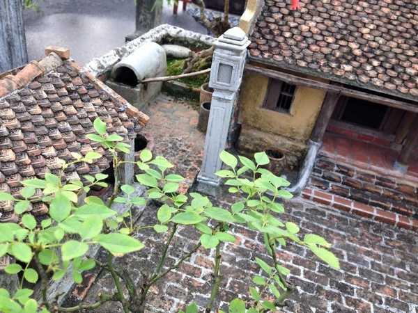 Sân gạch, mái ngói được tái hiện lại một cách tỉ mỉ, chỉn chu.