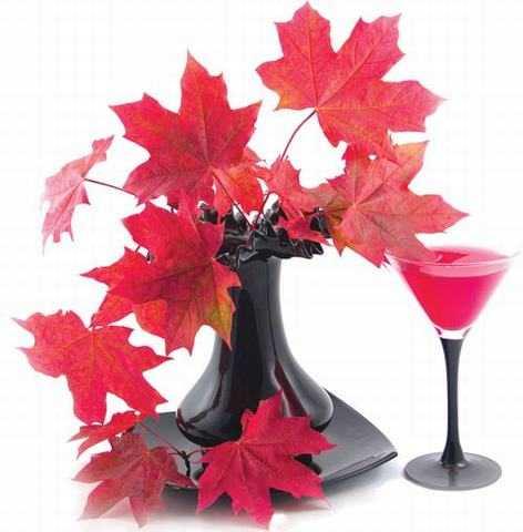 Đây là lá của cây thích chứa nhiều vitamin, khoáng chất và canxi                rất tốt cho hệ tiêu hóa.