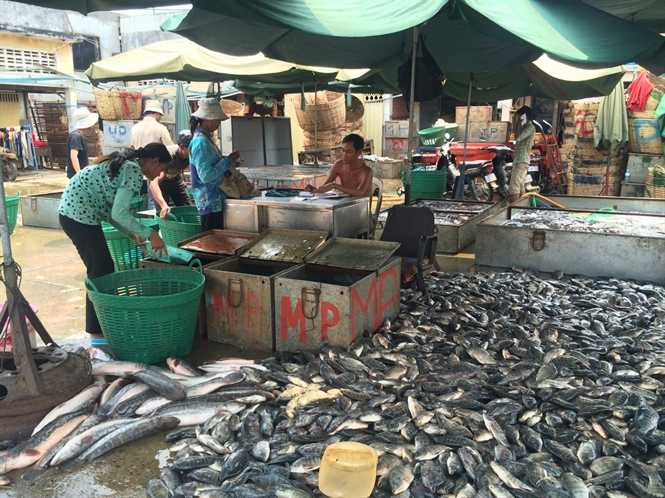 Chợ cá bên Biển Hồ
