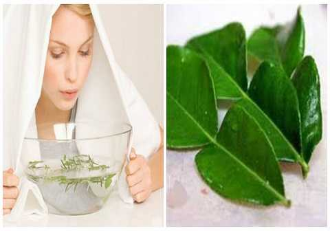 Lá bưởi giúp chị em thư giãn hiệu quả nhờ hương thơm tinh khiết.
