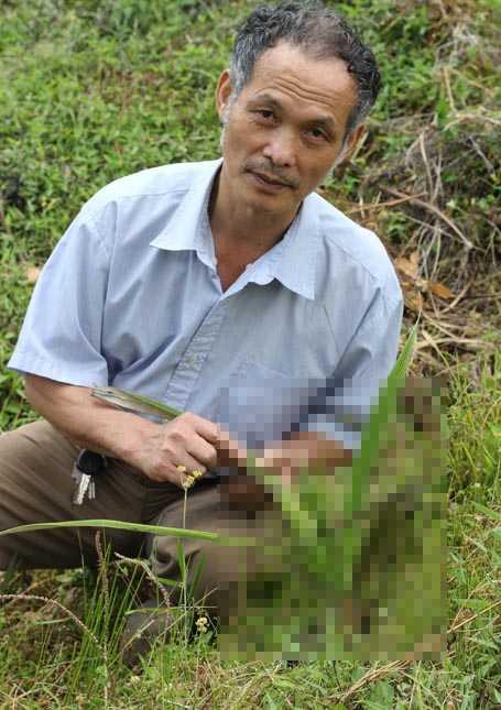 Ông Lâm bên một loại thảo dược thải độc cực mạnh, chống ung thư