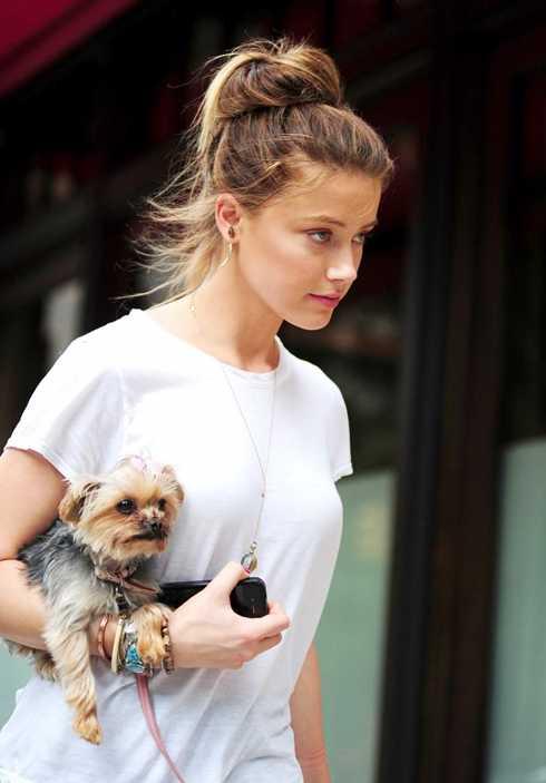 Amber Heard và chú cún cưng trên đường phố New York.