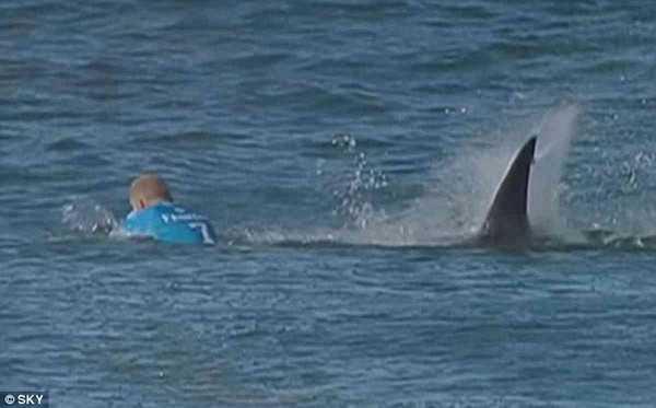 Giây phút kinh hoàng khi cá mập tấn công Mick Fanning