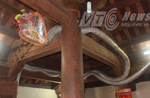 Hình nộm rắn