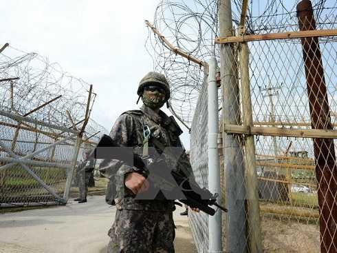 Binh sỹ Hàn Quốc gác gần hiện trường vụ nổ mìn tại khu phi quân sự giữa hai miền Triều Tiên