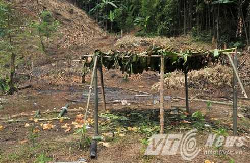 Vợ chồng anh Long chị Hoa được phát hiện bị chém tử vong ở rẫy, cách lán vài trăm mét