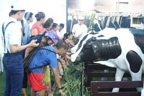 Ngày hội Cao Khỏe là sự kiện nằm trong chuỗi hoạt động giới thiệu đến người tiêu dùng sữa Dutch Lady Cao Khỏe