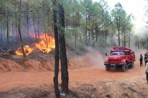 Xe cứu hỏa được điều động để khống chế ngọn lửa
