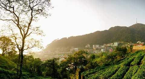 Tam Đảo với đặc trưng thời tiết của 4 mùa trong một ngày khá lý tưởng cho việc đi du lịch trong ngày quanh Hà Nội