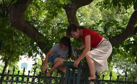 Thậm chí còn leo qua hàng rào để tìm chỗ xem. (Ảnh: Dân Việt)