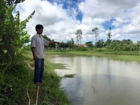 """Ông Nguyễn Văn Tràng bên ao cá bị """"quan"""" xã trộm đến 2 lần"""