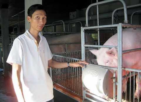Anh Tuấn mạnh dạn lắp cả hệ thống máy lạnh để nuôi lợn.