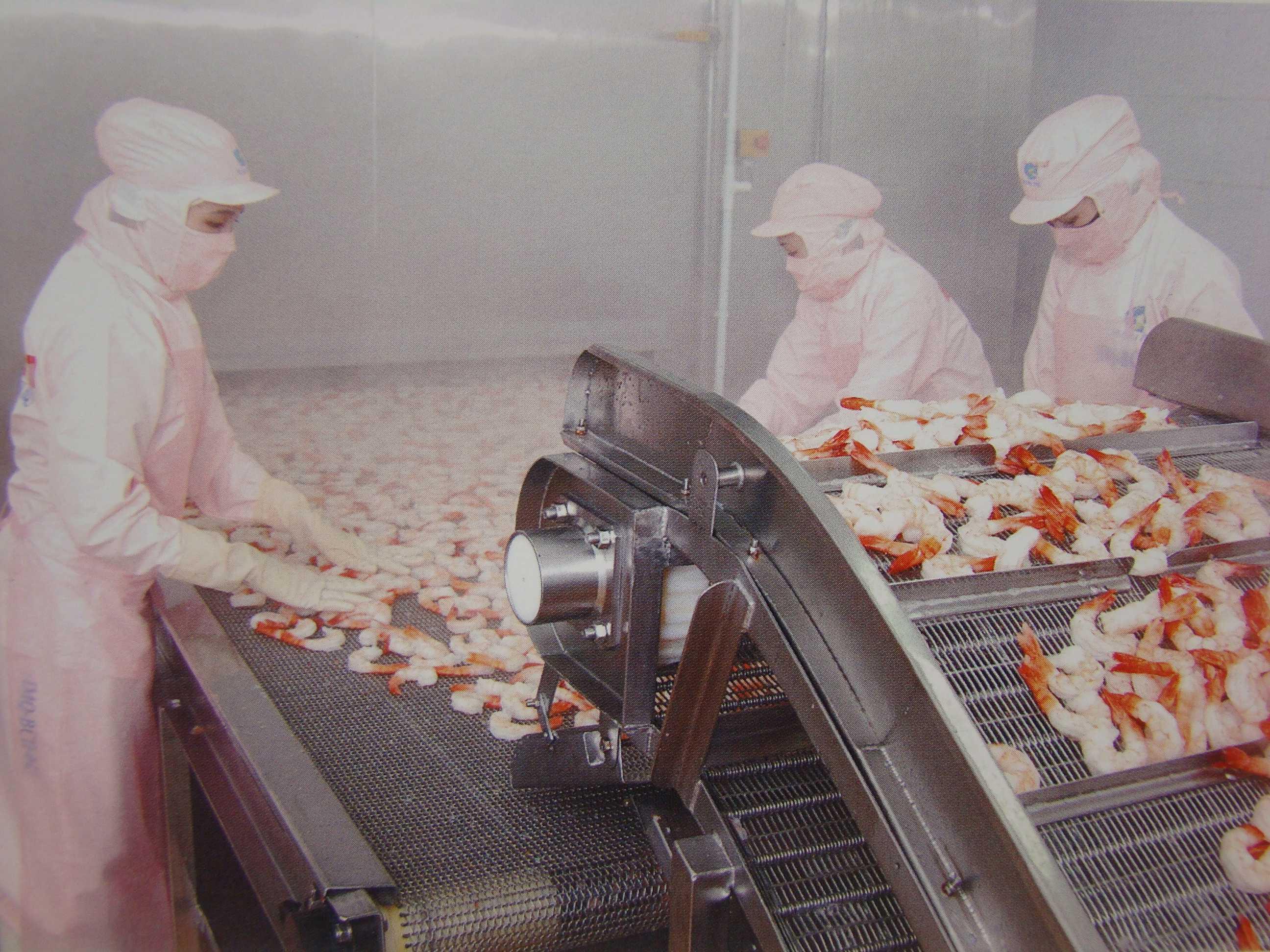 Cần đảm bảo vệ sinh an tòan lao động cho các công nhân trong ngành chế biến thực phẩm.