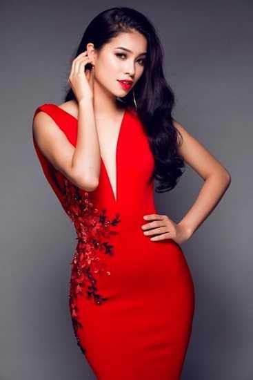 Cũng trong năm 2014, Phạm Hương tham dự cuộc thi Hoa hậu Việt Nam, nhưng cô chỉ dừng chân ở top 10 chung cuộc.