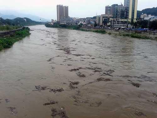 Lũ lên cao, củi rác trôi lềnh bềnh trên sông Hồng (đoạn chảy qua TP Lào Cai) - Ảnh: Hồng Thảo