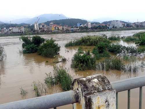 Lũ ngập bãi Soi Tiền ở giữa sông - Ảnh: Hồng Thảo