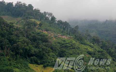 Bản làng trên lưng núi của hai tỷ phú Hồ Văn Du và Hồ Văn Lượng, sở hữu vườn sâm trị giá hàng trăm tỷ đồng