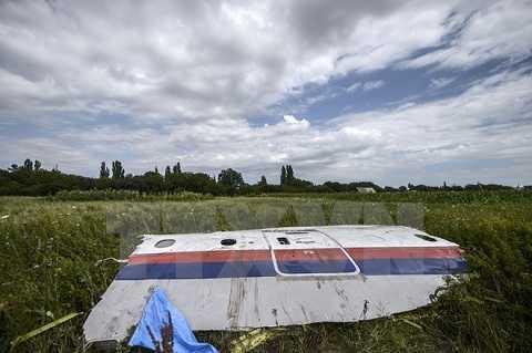 Mảnh vỡ máy bay MH17 gần làng Grabove, vùng Donetsk, miền Đông Ukraine