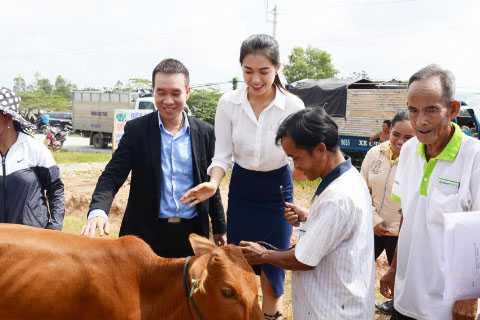 Tại lần trao bò này, chương trình huy động được 50 con bò cho người nông dân.