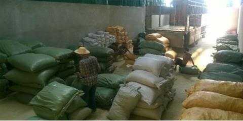 Lô dược liệu nhập từ Trung Quốc của công ty CP Dược Sơn Lâm không đầy đủ điều kiện nhập khẩu vào Việt Nam được đưa về kho kiểm tra