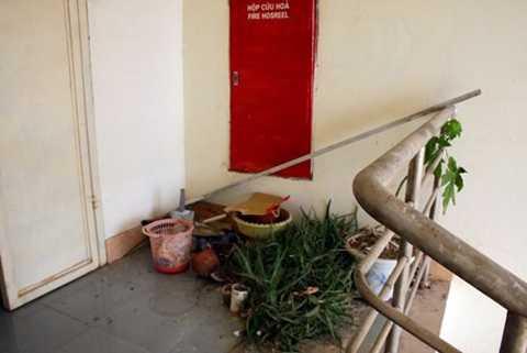 Cửa thoát hiểm được tận dụng tối đa diện tích để trồng hoa và xả rác.