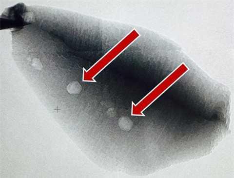 Carbon tìm thấy trong mẩu đã zircon đẩy lùi thời gian sự sống xuất hiện trên Trái Đất 300 triệu năm so với ước tính trước đây. Ảnh: Stanford/UCLA.
