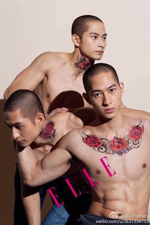 Ba anh em họ Lưu sinh năm 1987 tại Canada. Bố là người Hoa còn mẹ là người Việt Nam.
