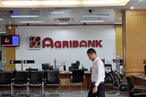 Agribank hiện có số nhân sự nhiều gấp đôi so với các ông lớn quốc doanh khác như VietinBank, Vietcombank hay BIDV. Ảnh: Anh Quân.
