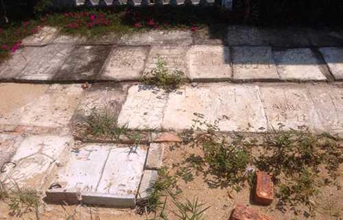 Khu nghĩa trang - nơi yên nghỉ của hàng nghìn sinh linh kém may mắn, được bà Lành chôn cất cẩn thận.